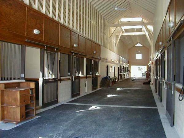 Florida Horse Farm Archives
