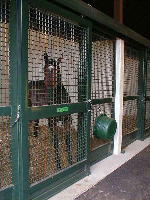 Stall Door Design Thoughts And Tips Blackburn