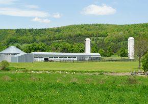 1662014 Charlotte Valley Farm 1