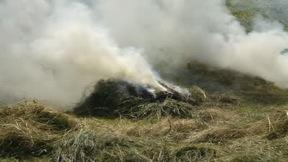 Burning Hay