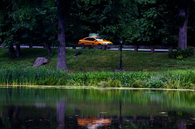 CAR IN CENTRAL PARK