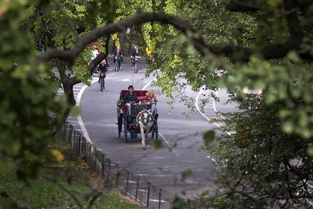 A horse drawn carriage is seen going through Central Park in New York